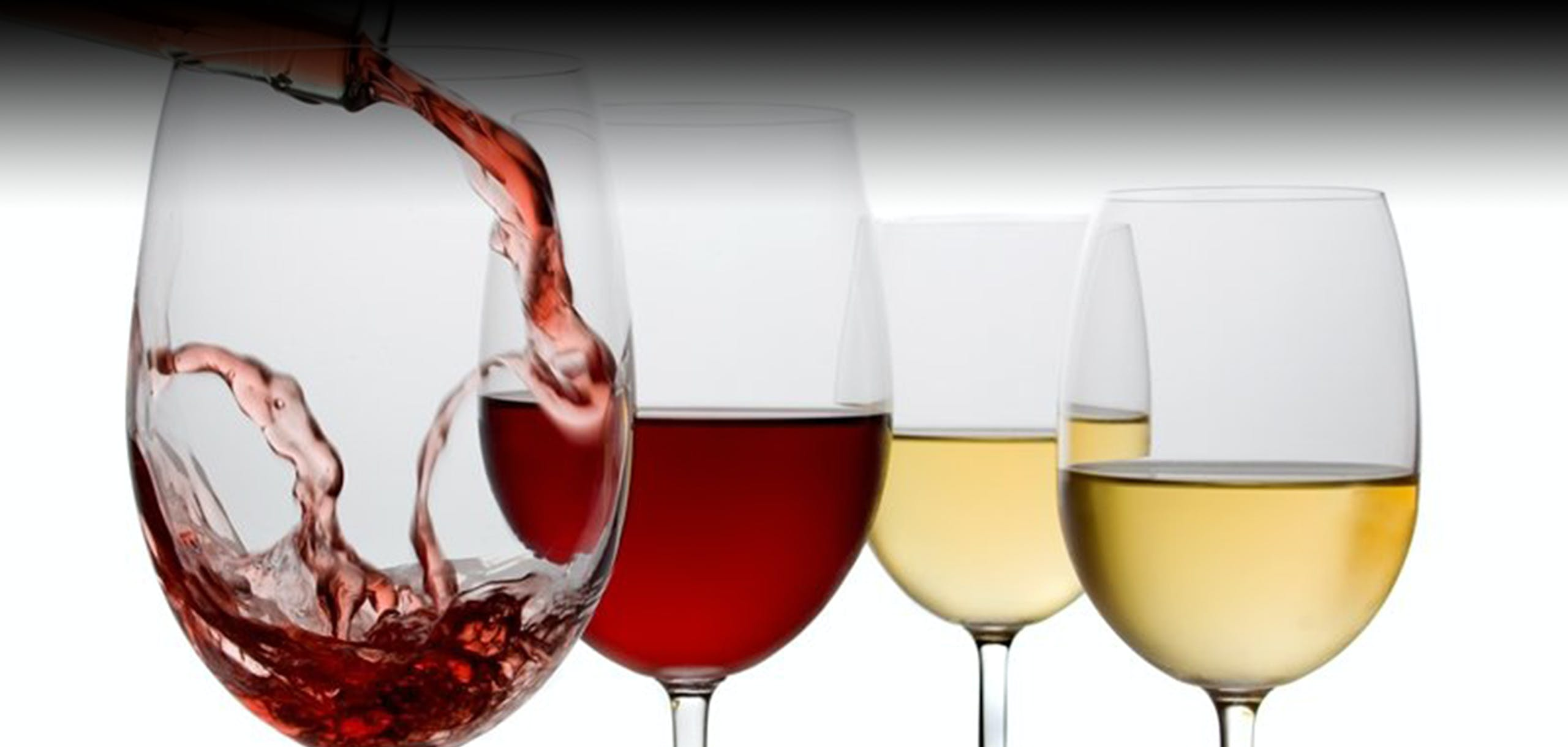 Vinfest
